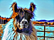 Llama Digital Art Framed Prints - Llama Framed Print by Debra Kirk