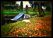 Fallen Leafs Photos - Look back and smile on perils past by Yvon -aka- Yanieck  Mariani