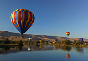 Hot Air Balloons Art - Looking for a Place to Land by Mike  Dawson