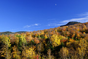 Sloping Prints - Loon Mountain Foliage Print by Luke Moore