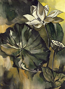 Alfred Ng - Lotus With Yellow