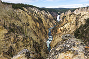 White River Scene Posters - Lower Yellowstone Canyon Falls - Yellowstone National Park Poster by Brian Harig