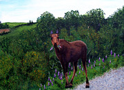 Barbara Griffin - Lupine Loving Moose