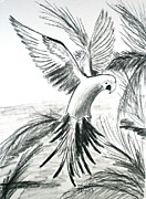 Tropics Drawings - Macaw by Robyn Hapner