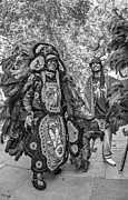 Steve Harrington - Mardi Gras Indian monochrome