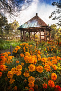 Tennessee Barn Prints - Marigolds Print by Debra and Dave Vanderlaan