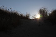 Wingsdomain Art and Photography - McClure Beach Sand Dunes at Point Reyes...