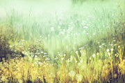 Impressionistic Art - Meadowland by Amy Tyler