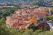 South Of France Prints - Mediterranean village of Collioure in Roussillon Print by Vilainecrevette