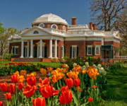 Thomas Jefferson Posters - Monticello Poster by Nigel Fletcher-Jones