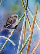 Wren Paintings - Morning Has Broken by Patricia Pushaw