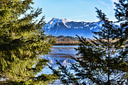 Lawrence Christopher Acrylic Prints - Mount Cheam From Harrison Mills Acrylic Print by Lawrence Christopher