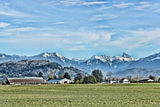 Mountain Valley Photo Prints - Mount Cheam From The North Side Of The Fraser River Print by Lawrence Christopher