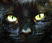 Pet Portraits Digital Art Posters - Mystery - Good Fortune Black Cat Art Poster by Sharon Cummings