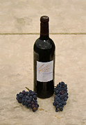 Malbec Prints - Napa Still Life Print by Paul Tagliamonte