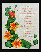 Barbara Griffin - Nasturtiums and Serenity Prayer