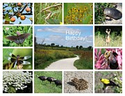 Rosanne Jordan - Nature Birthday Greetings