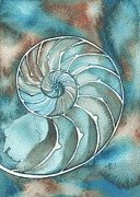 Liquid Painting Prints - Nautilus Print by Tamara Phillips