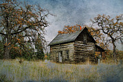 Old Cabins Framed Prints - Old Cabin Framed Print by Steve McKinzie