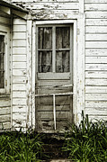 Screen Door Prints - Old Door Print by Margie Hurwich