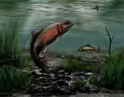 Ron Grafe - On The Attack - Rainbow Trout after a Fly