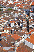 Birdseye View Metal Prints - Orange Roofs Metal Print by Jose Elias - Sofia Pereira