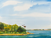 Michelle Wiarda - Ospreys on the Vineyard Watercolor...
