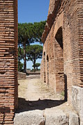 Ally Photos - Ostia Antica by Barbara Harvill