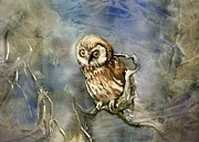 Alfred Ng - Owl In The Wood