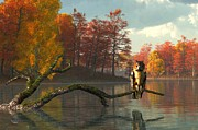 Colors Of Autumn Posters - Owl on an Autumn Lake Poster by Daniel Eskridge