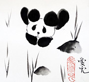 Oiyee  At Oystudio - Panda Time