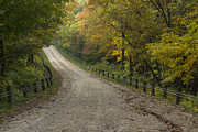 Gravel Road Prints - Park Road Autumn 2 A Print by John Brueske