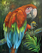 Yellow Beak Paintings - Parrot Talk - Scarlet Macaw by Kathy Brecheisen