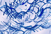 World Of Thought Prints - Particles of Blue Print by Kellice Swaggerty
