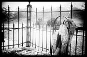 Black Cemetery Framed Prints - Past Life Framed Print by Cat Connor