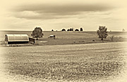 Steve Harrington - Pastoral Pennsylvania sepia
