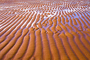 Sand Patterns Metal Prints - Patterns in the Sand Metal Print by Diane Diederich