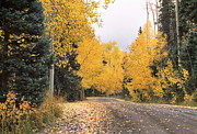 Mountain Road Photo Prints - Peak Color Print by Eric Glaser
