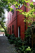 South Philadelphia Prints - Philadelphia Pathway In Charleston Print by Christiane Schulze