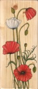 Snezana Kragulj Posters - Poppies on wood Poster by Snezana Kragulj