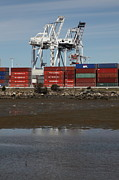 Wingsdomain Art and Photography - Port of Oakland 5D22243