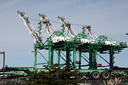 Wingsdomain Art and Photography - Port of Oakland 5D22265