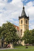 Matthias Hauser - Prague New Town Hall