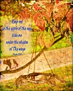 Feeder Greeting Cards Posters - Psalm 17 8 Poster by Michelle Greene Wheeler