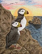Jeanette Kabat - Puffin on Sunset Cliff