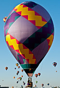 Hot Air Balloon Race Framed Prints - Purple Egg Framed Print by Jim Chamberlain