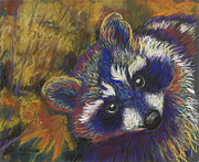 North American Wildlife Pastels - Raccoon by Kate Owens
