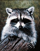 Raccoon Painting Posters - Raccoon Portrait Poster by Richard Hauser
