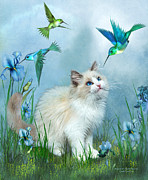 Kitten Art Prints - Ragdoll Kitty And Hummingbirds Print by Carol Cavalaris
