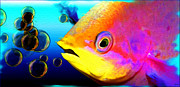 Fish Underwater Paintings - Rainbow Fish by Daniel Janda
